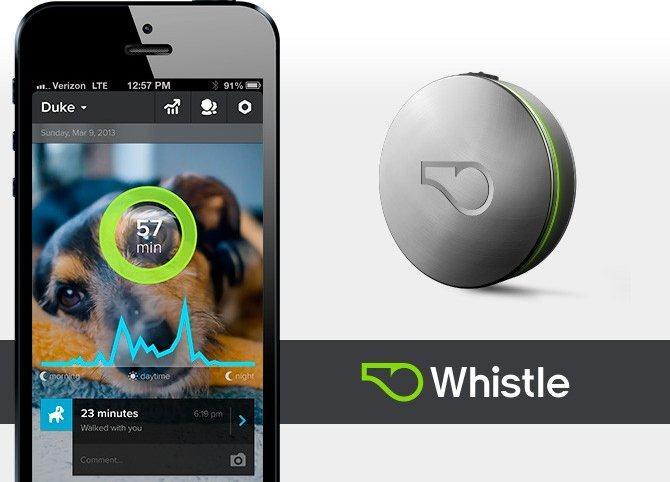 Whistle, seguimos a nuestra mascota desde el iPhone
