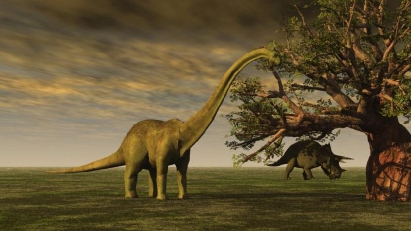 Los cient�ficos dicen que puede volver a crear dinosaurios para que vivan dentro de los pr�ximos 5 a�os