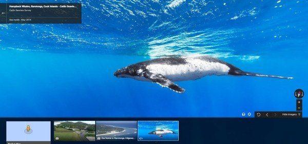 Ahora Google Maps te ofrece mapas del fondo del mar