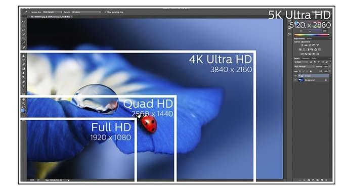 5 puntos clave para elegir el mejor monitor para profesional...